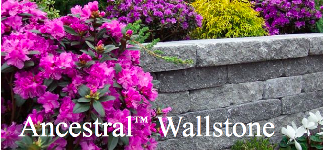 Ideal Ancestral Wallstone